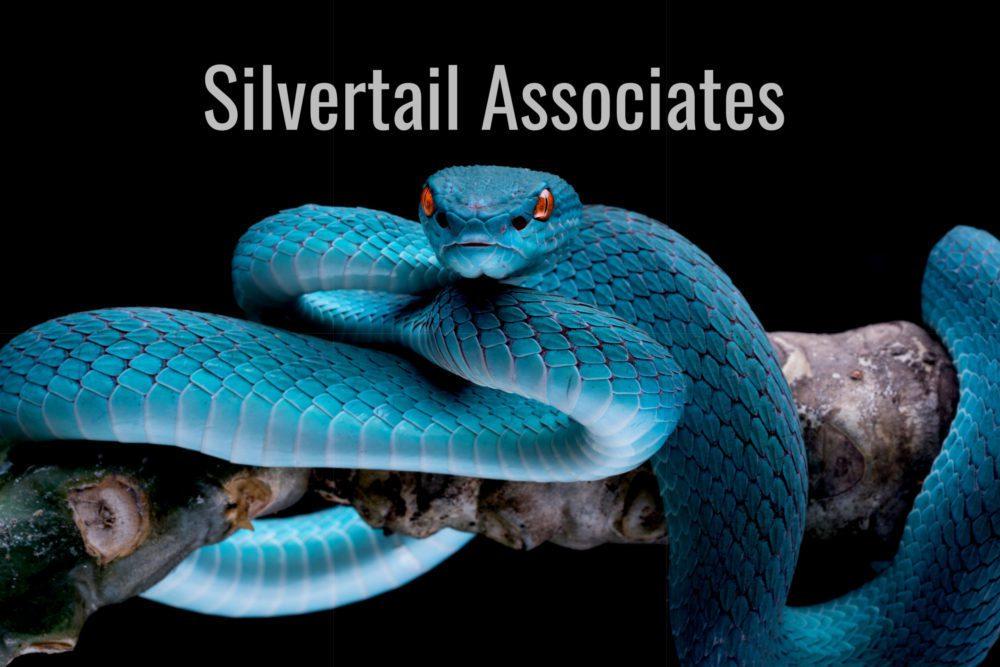 Silvertail Associates
